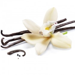 vanilla e-liquid for e-cigarettes